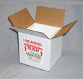 Insulated Reptile Shipping Box (9x9x9)