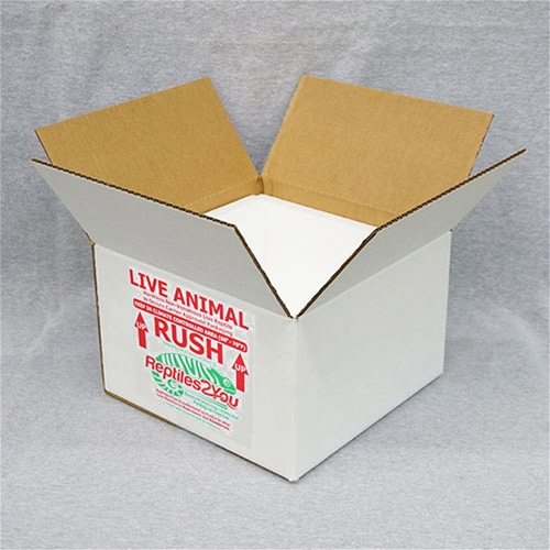 Insulated Reptile Shipping Box (11x11x7)