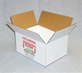 Insulated Reptile Shipping Box (12x9x6)