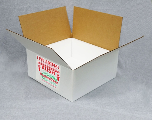 Insulated Reptile Shipping Box (15x15x7)